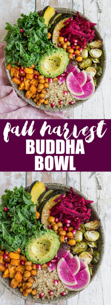 This healthy vegan fall harvest buddha bowl recipe is loaded with nourishing ingredients like sweet potato and chickpeas! Enjoy this healthy bowl for lunch or dinner!
